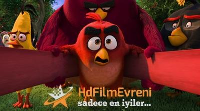 Angry Birds 2016 Türkçe Dublaj izle